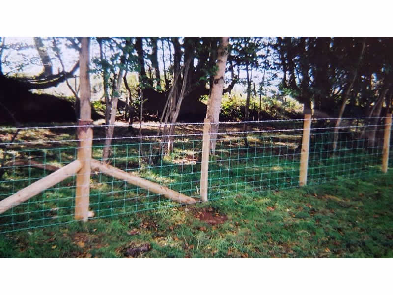 Post and wire stock proof fencing by West Wales Panels and Groundworks