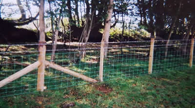 Post and rail stock fencing by West Wales Panels and Groundworks